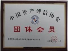 中国资产评估协会团体会员
